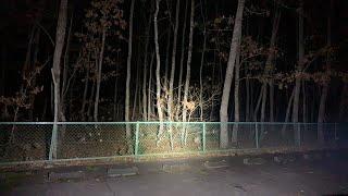超怖い心霊 ghost live めちゃ怖い心霊生ライブ