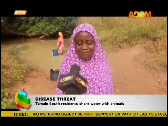 Disease Threat; Tamale South residents share water with animals (5-12-18)