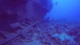 Трагедия Салем экспресс, Египет, подводные съемки(, 2015-09-29T09:57:46.000Z)