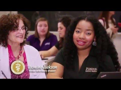 Purdue University College of Veterinary Medicine (PVM) Info Video