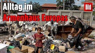 Familien in Bulgarien leben in Armut – dann kommen sie nach Deutschland