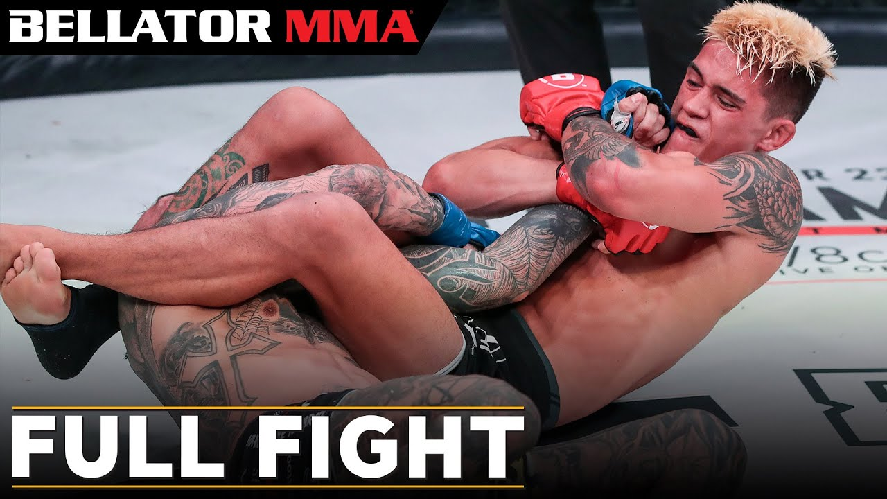 Bellator 238: Джей Джей Уилсон - Марио Наварро (Full Fight)