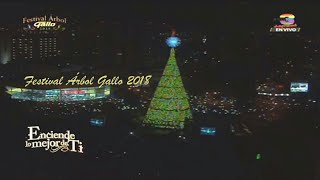 Festival Árbol Gallo 2018 | Retransmisión | Guatemala