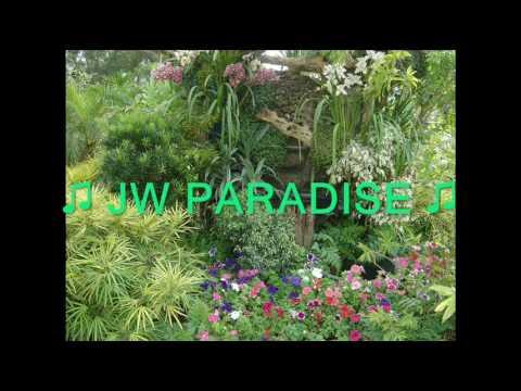JW in PARADISE (karaoke)