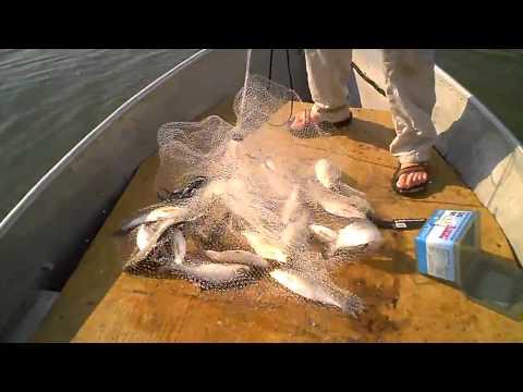 ловля сетью с лодки