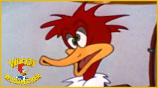 43:36 Woody Woodpecker | Smoked Hams | Woody Woodpecker Full Episode | Old Cartoons|Videos for Kids