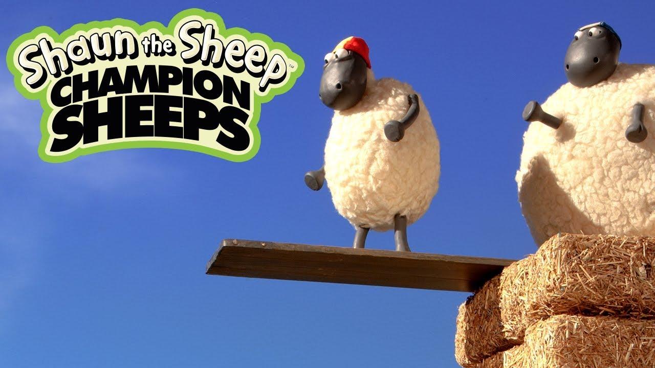 Nhảy cầu | Championsheeps | Những Chú Cừu Thông Minh [Shaun the Sheep]