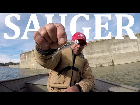 Sauger Fishing With Jigs