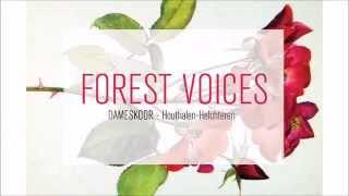 Forest Voices - Vois Sur Ton Chemin / Les Choristes
