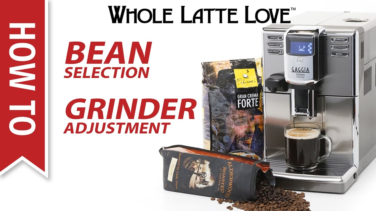 How To Coffee Bean Selection And Grind