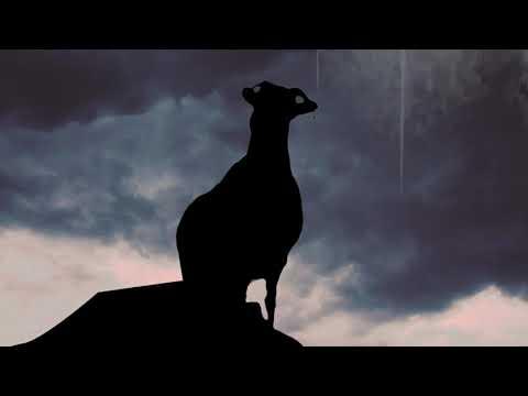 Kaupe 'Cognitive Dissonance' Album Promo