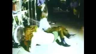 The Stooges - 1969 (HQ)