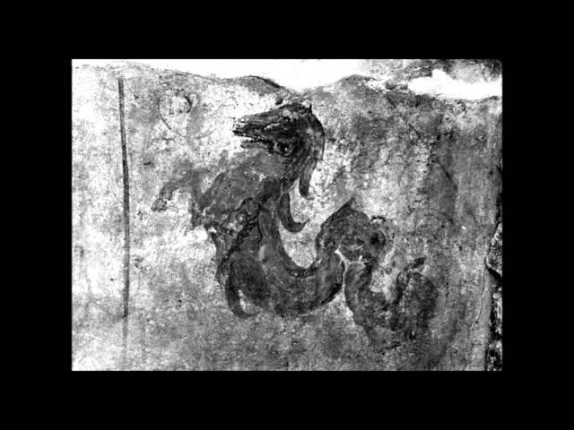 AQUATIQUE TAPE HIPPOCAMPE FOU TÉLÉCHARGER NET