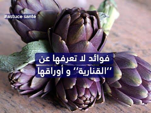 صحة الأبدان ليوم الجمعة 23 فيفري 2018 - قناة نسمة