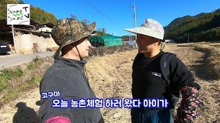 [유튜버] [전원일기] 쌤쌤tv 시골농촌체험!! 우리 …