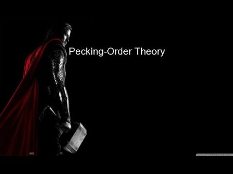 Essay pecking order theory