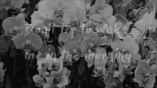 Asleep - The Smiths [Lyrics]