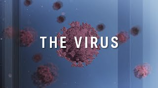 The Virus: The latest on the world's fight against the coronavirus | ABC News