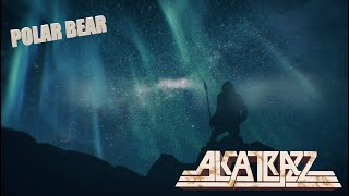 - Polar Bear Video
