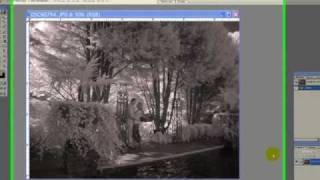 The Art of Black & White Infrared Photography Enhancement