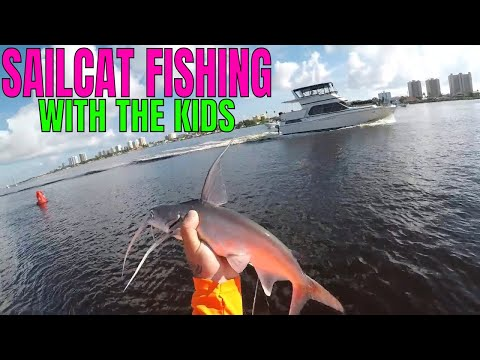 TAKE THE KIDS FISHING FOR SAILCATS