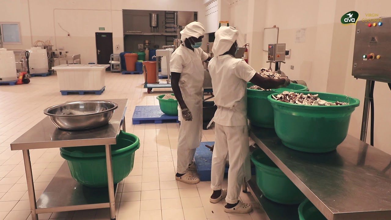 ava coconut oil - Production Processing flow