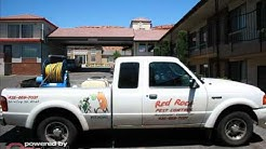 Red Rock Pest Control - (435)669-7031