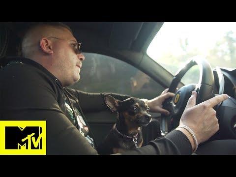Cani che vanno in Ferrari e agenzie matrimoniali per cani | #Riccanza: Vita da Cani - Episodio 1
