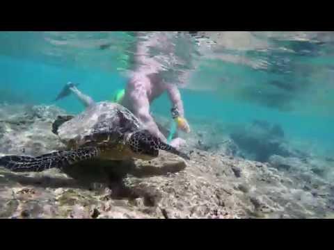 GoPro: Snorkeling at Hanauma Bay 1080p [HD]