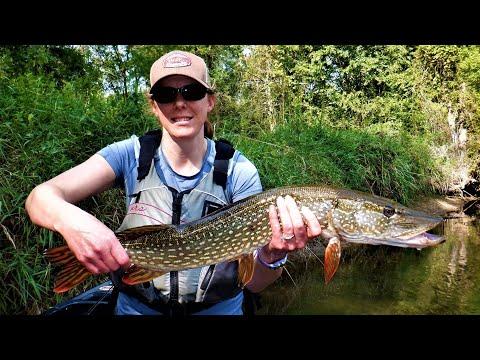 Indiana Kayak Fishing: Early Fall Pike Madness 9/6/20