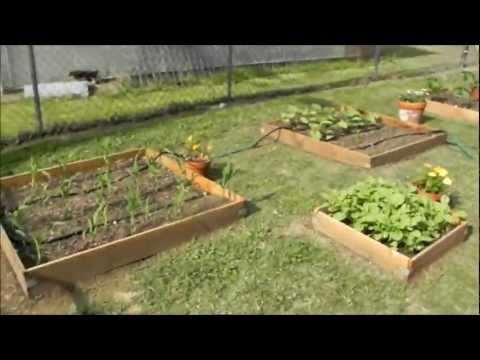 How To Use Horse Manure In A Raised Bed Garden
