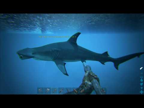 ARK Modded: Exploring the Ocean via Dynamic Means