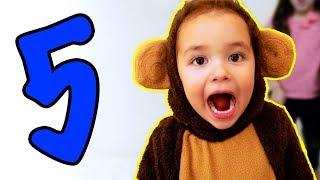 5 Monitos - 5 Little Monkeys in Spanish! Bebé Español