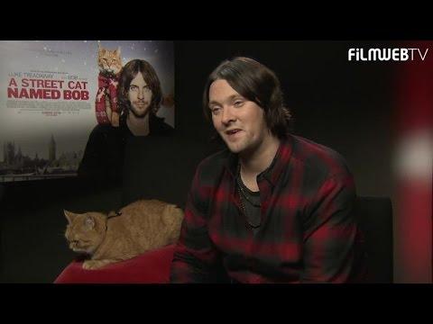 Street cat Bob bought James Bowen a house!