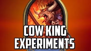 Cow King Experiments