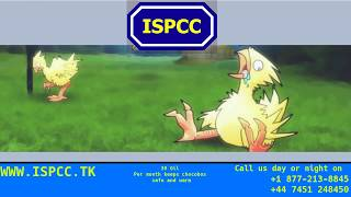 Interdimentional Society for the Prevention of Cruelty to Chocobos