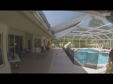 None - Superdad Dives Into Pool to Save Toddler
