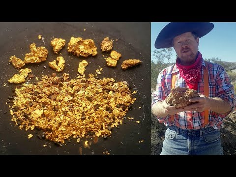 Allan's Gold Mining Virgin Ground Discovery