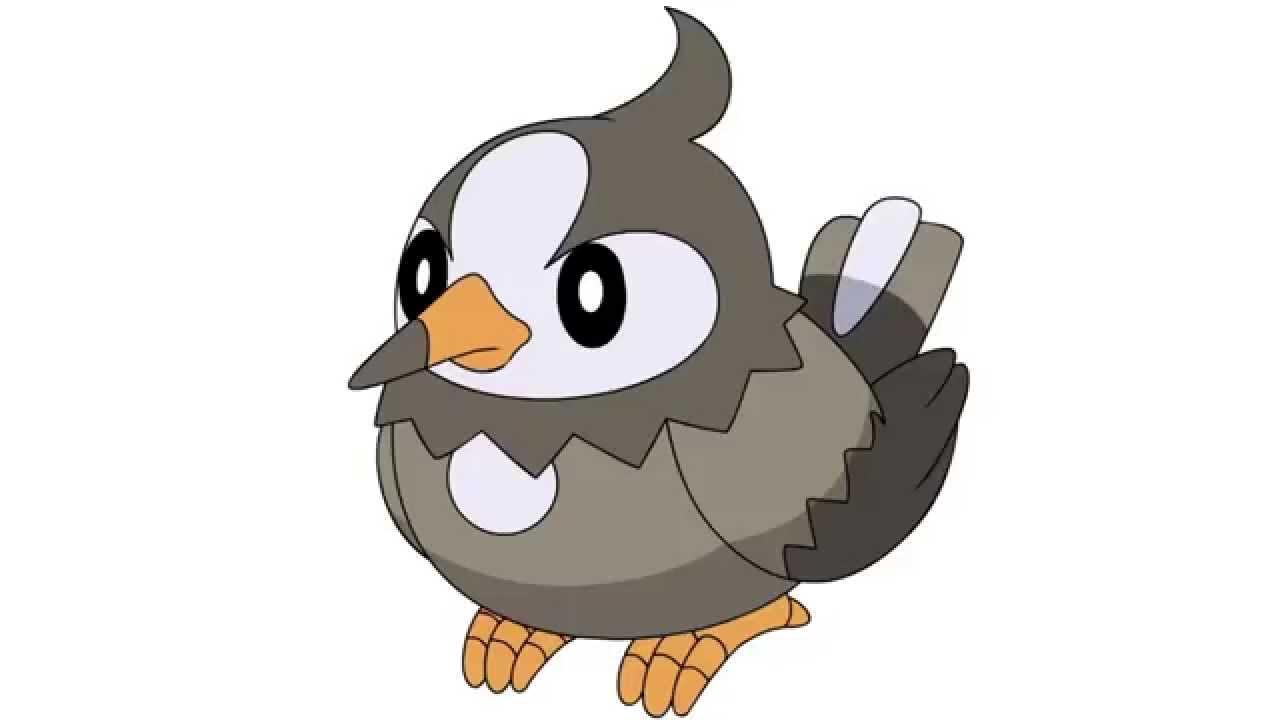Pokemon Cries - Starly | Staravia | Staraptor - YouTube