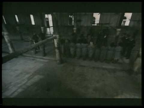 Lager di sterminio hanging scene - YouTube