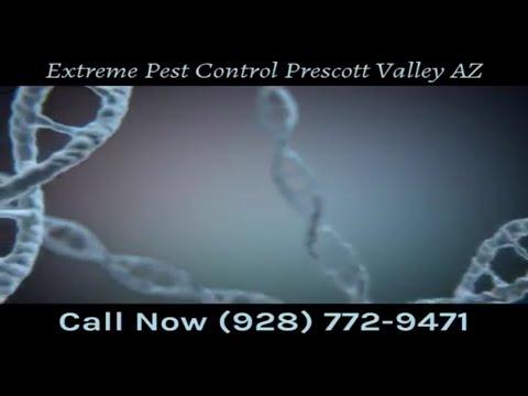 Extreme Pest Control Prescott Valley AZ