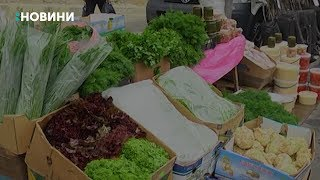 Близько півтисячі виробників торгували на вулиці Набережна, що у Рівному