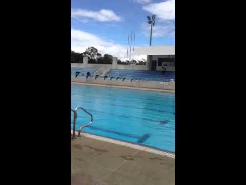 700 year stadium pool