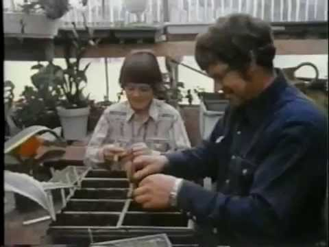 Moving Ahead (1986) - the story of the Federation of Alberta Gas Co-ops