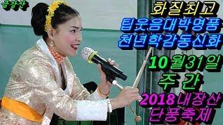 💗버드리 배꼽웃음대박최고💗 10월31일 주간 2018 내장산 단풍축제 초청 공연