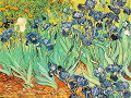 A Tribute to Vincent Van Gogh