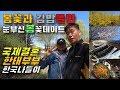 국제결혼 한태커플의 한국나들이 / 김밥과쫄면 데이트 / 봄꽃공원풍경