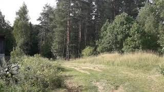 Barin (Mr.Ice) фото-охота на аиста)))