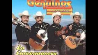 Trio Los Genuinos de Jacala Hidalgo  Corrido de Pulido