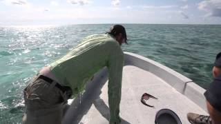 fly fishing film tour 2013 trailer